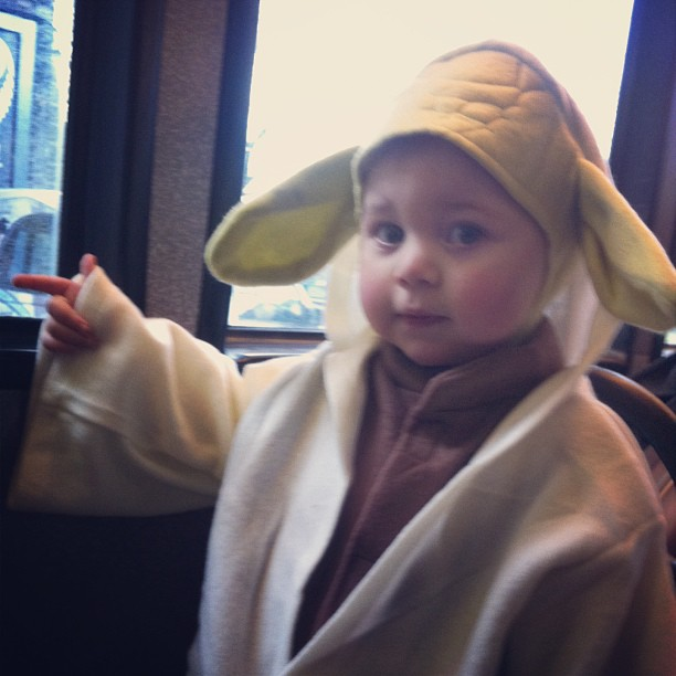 Yoda on the Bus